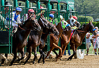 SARATOGA SPRINGS, NY - AUGUST 25: Abel Tasman  #1, ridden by jockey Mike Smith, wins the Personal Ensign Stakes on Travers Stakes Day at Saratoga Race Course on August 25, 2018 in Saratoga Springs, New York. (Photo by Sue Kawczynski/Eclipse Sportswire/Getty Images)