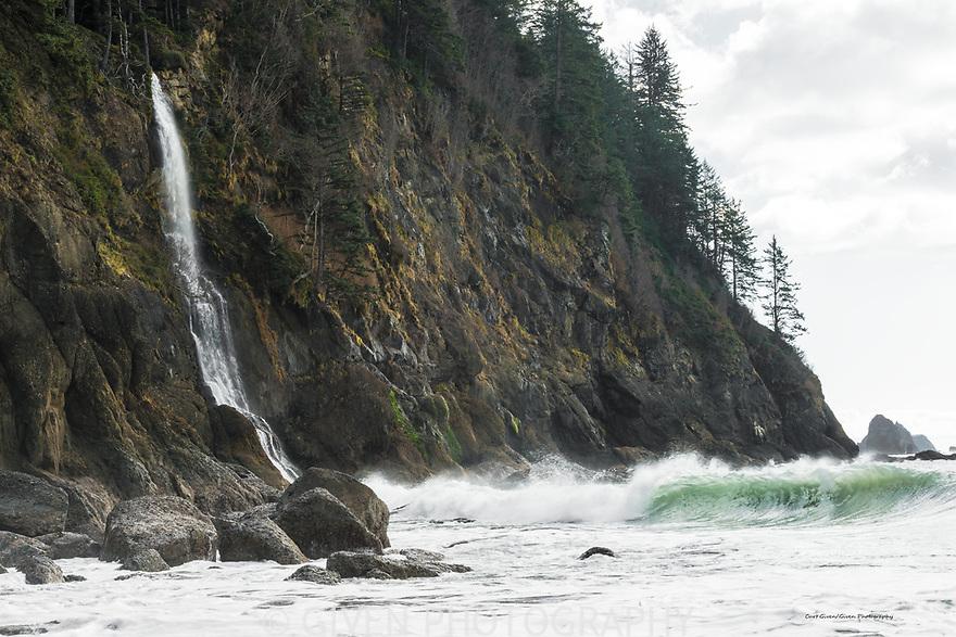 Waterfall, Olympic National Park, Washington