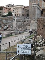 The Roman Forum Meets Modern Plumbing - Rome