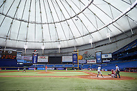 General view of Tampa Bay Rays David Rodriguez (68) facing off against pitcher Jake Cosart (52) during an instructional league game against the Boston Red Sox on September 24, 2015 at Tropicana Field in St Petersburg, Florida.  (Mike Janes/Four Seam Images)
