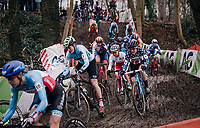 peloton diving into the forest<br /> <br /> Women Elite Race<br /> UCI CX Worlds 2018<br /> Valkenburg - The Netherlands