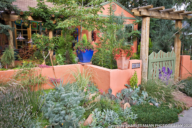 The colored outer walls and  sidewalk strip of Dan Johnson's Denver garden are used to full advantage to set a tone of anticipation for what visitors might expect behind the walls.