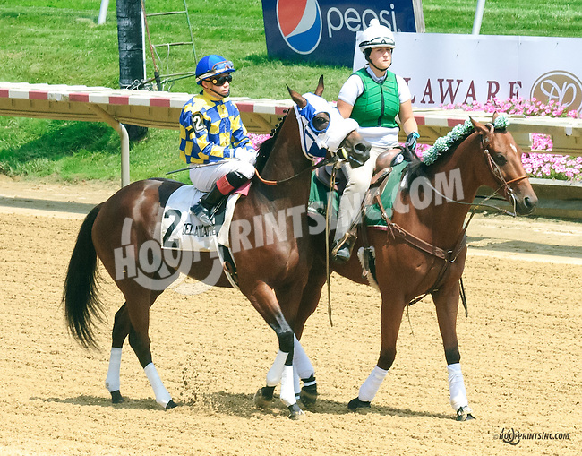 Disco Chick before The Dashing Beauty Stakes at Delaware Park on 7/11/15