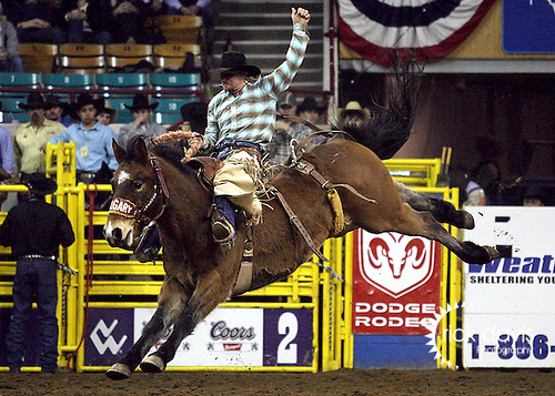 1/19/09--Photo by Rick Davis--PRCA cowboy Kobyn Williams of DeBerry, Texas scored a 72 point saddle bronc ride on the Calgary bronc Vitalix Luxotic during action at the 103rd National Western Stock Show and Rodeo in Denver, Colorado.