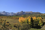 Sneffels Range with Aspen trees in autumn colors, southwest Colorado.