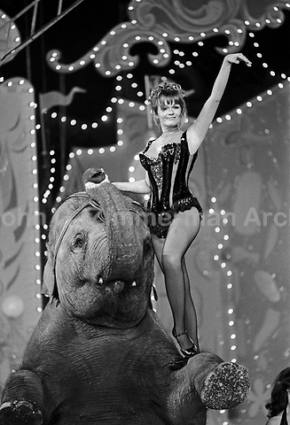 """Actress Valerie Perrine performs with elephant at the """"Circus of the Stars,"""" (CBS Special), Santa Monica Civic Auditorium, November, 1976. Photo by John G. Zimmerman"""