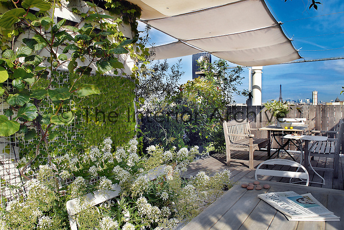 On this rooftop terrace which commands views of both the Eiffel and Montparnasse towers, shade is provided by an awning strung between a simple structure of delicate steel girders and climbing plants