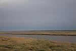 Salt marsh and creeks, Shingle Street, Suffolk, England