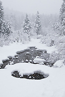 snowy landscape on Moose Creek during blizzard in Rimini