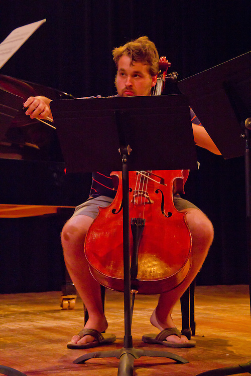 Port Townsend, Centrum, Chamber Music Workshop, June 16-21 2015, Fort Worden, musicians teaching workshop artists, Quartet Elektra, Tyler James, cello,