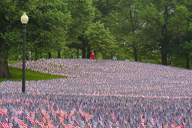 Field of flags. Memorial Day. Boston Common, MA, thousands of U.S. flags, display, remembrance, honoring fallen soldiers, war,