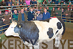 SUPREME CHAMPION: Maurice Sheehan, Ardfert owner of the Supreme Champion being presented with his trophy by Johnny McGlynn of FBD at the Annual Fatstock show at the Kingdom Mart on Monday l-r: Philip Healy (Mart manager), Johnny McGlynn (FBD), Maurice Sheehan and John Dillon (Judge).
