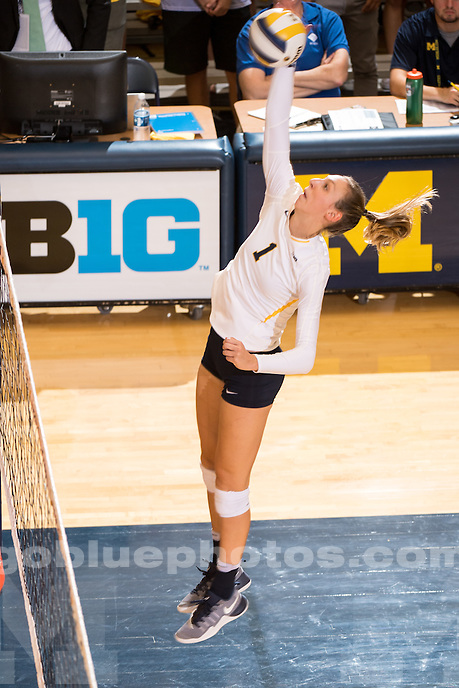The University of Michigan volleyball team defeats Auburn, 3-0, at Cliff Keen Arena in Ann Arbor, MI on September 16, 2016.