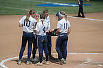 30 MAY 2016: Messiah College teammates cheer their pitcher on during the Division III Women's Softball Championship is held at the James I Moyer Sports Complex in Salem, VA.  University of Texas-Tyler defeated Messiah College 7-0 for the national title. Don Petersen/NCAA Photos