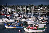 Europe/France/Bretagne/29/Finistère/Lanildut: Le premier port goemonier de France et l'Aber Idult