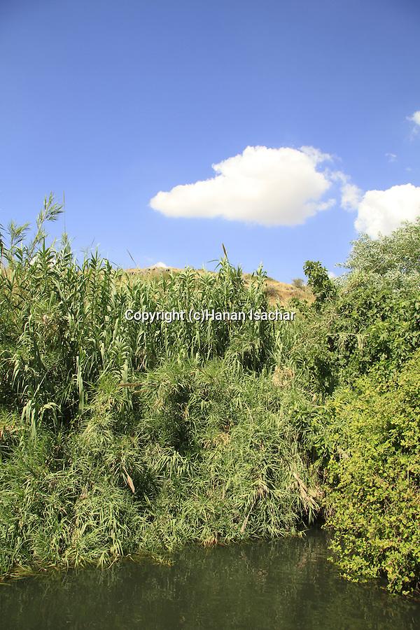 Ein Heshek at the Golan Heights
