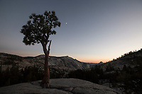 Yosemite National Park nella foto punto Forces of Change geografico Yosemite National Park 27/09/2017 foto Matteo Biatta<br /><br />Yosemite National Park in the picture Forces of change point geographic Yosemite National Park 27/09/2017 photo by Matteo Biatta