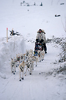 Jim Lanier Runs Up Bank Of Yukon to Galena Checkpoint<br /> 2004 Iditarod