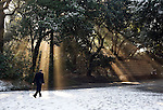Visitors walk through the grounds of Meiji Jingu Shrine after the year's first snowfall in Tokyo, Japan on 02 Feb. 2010.