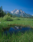 Sawtooth National Recreation Area, ID:  Mount McGown reflected in a small pool of a wetland area near Stanley Lake