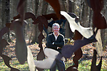 David M. Hayes son of the late David Hayes at the Hayes Farmstead stands among he Sculptures created by his father the late David Hayes, the fields of sculptures  have been listed on the State Register of Historic Places. Wednesday, November 15, 2017, in Coventry. (Jim Michaud / Journal Inquirer)