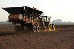 Afrika ANGOLA Malange , Biocom Projekt, Joint venture zwischen Konzern Odebrecht aus Brasilien und Sonangol, staatliche Oelgesellschaft Angolas, und weiteren Investoren u.a. Tocher des Praesidenten Dos Santos, auf einigen tausend Hektar wird Zuckerrohr fuer Produktion von Zucker und Bioethanol angebaut, die Zuckerfabrik ist im Bau und soll 240.000 Tonnen Zucker pro Jahr herstellen, dazu kommen 30 Millionen Liter Ethanol und 70 Megwatt Strom aus Bagasse von einem Biomassekraftwerk, Plantage und Zuckerfabrik sollen 1470 Menschen beschaeftigen, John Deere Traktor mit Saatmaschine bei Pflanzung von Zuckerrohr / ANGOLA Malange , Biocom Project, sugar factory and large farm for production of sugar cane for 240.000 tons sugar and 30 billion litre bio ethanol, John Deere tractor with planting machine
