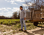 December 30, 2016. Rose Hill, North Carolina.<br /> <br /> John Dunn waits to hitch a trailer full of rutabagas to a truck on a field owned by Cottles Organics, a farm where he has worked since he was a child.<br />  <br /> John Dunn, age 19, is currently a freshman at NC State University and is the first person in his family to go to college. With a combination of grants, loans, help from his grandfather and weekend farm work, Dunn hopes to find finish college and find a career in agriculture.<br /> <br />  Colleges and universities, which are always trying to pinpoint an under-served and sometimes underprivileged populations of students, have noted a decline in students from rural areas of the country. There are various efforts underway in colleges and universities to identify more of these kids and get them enrolled.