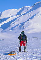 Mountaineers ski across the canwell glacier in the Alaska Range