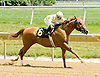 Thunder T winning at Delaware Park on 6/25/12