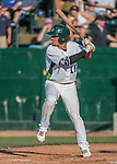 31 July 2016: Vermont Lake Monsters outfielder Luis Barrera in action against the Connecticut Tigers at Centennial Field in Burlington, Vermont. The Lake Monsters edged out the Tigers 4-3 in NY Penn League action.  Mandatory Credit: Ed Wolfstein Photo *** RAW (NEF) Image File Available ***