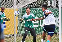 SÃO PAULO,SP, 18.08.2015 - FUTEBOL-PALMEIRAS - Fernando Prass do Palmeiras durante treinamento do Palmeiras na Academia de Futebol na Barra Funda zona oeste, nesta terça-feira 18.  (Foto: Bruno Ulivieri/Brazil Photo Press)