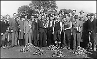 BNPS.co.uk (01202 558833)<br /> Pic: GardenMuseum/BNPS<br /> <br /> Images of the celebrations of the potato harvest at Wollescote in 1950 reveals almost exclusively male plot holders.<br /> <br /> These fascinating old pictures show that allotments have been a passion of the British for centuries.<br /> <br /> Today, more than 90,000 people are on waiting lists to get their own little patch of land to grow vegetables, and the pastime was just as popular in the early years of the 20th century.<br /> <br /> Garden historian and lecturer Twigs Way has sourced dozens of images of green-fingered Brits tending to their allotments during the 'allotment craze' amongst the middle classes sparked by the Allotments Act of 1908 which required councils to supply them when demanded.<br /> <br /> Families would decamp to the allotment on a Sunday and picnic among the cabbages, dividing tasks with the husband digging, the wife collecting crops and the children weeding or caterpillar picking.<br /> <br /> They grew cabbage, carrots, leeks, parsnips, beet, marrow and spinach while also staying faithful to the Victorian favourites seakale, salsify, scorzonera and asparagus.<br /> <br /> The allotments helped keep the British fed during the two world wars but fell out of favour in the 1960s and 1970s with elderly plot holders cast as villains in the battle to free up land for the housing boom.<br /> <br /> But, prompted by a desire amongst Brits to reconnect with the land, they are now in the throes of a full-scale revival.