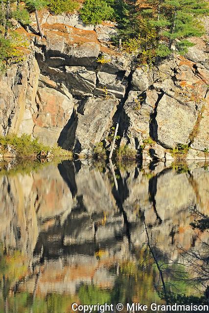 Reflection of rock in wetland, DOrset, Ontario, Canada