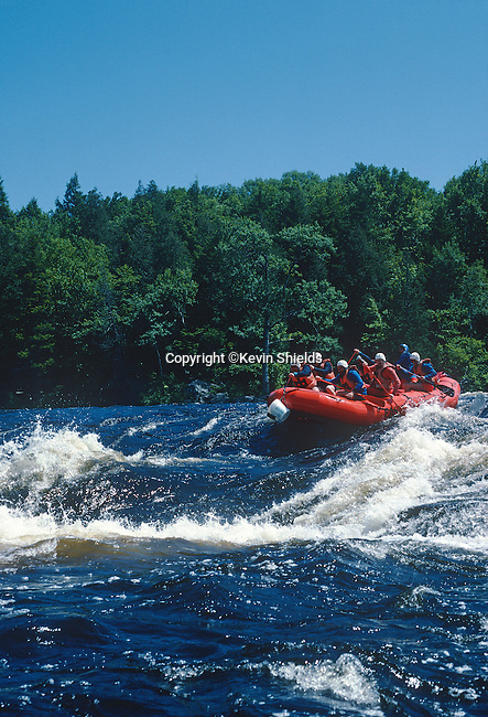 Rafting on the Penobscot River, Piscataquis County, Maine, USA