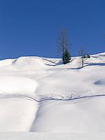 Austria, Tyrol, Winter scenery near Kirchberg in Tyrol | Oesterreich, Tirol, bei Kirchberg in Tirol: Winterlandschaft