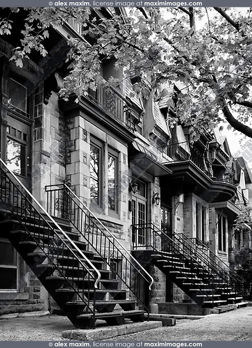 Row of historic townhouses, French style architecture houses, on Avenue Laval in Montreal, Quebec, Canada. L'avenue Laval, Ville de Montréal, Québec, Canada. Black and white.