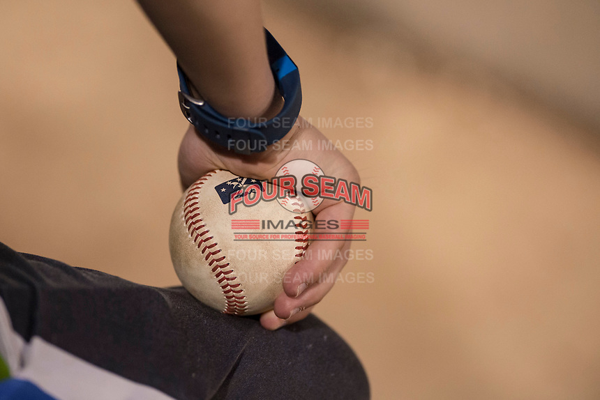 A fan holds a baseball during a Minor League Spring Training game between the Milwaukee Brewers and the Los Angeles Angels at Tempe Diablo Stadium on March 29, 2018 in Tempe, Arizona. (Zachary Lucy/Four Seam Images)