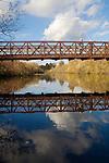 Bellevue, Mercer Slough Nature Park, Washington State, Pacific Northwest, USA, urban wilderness preservation,