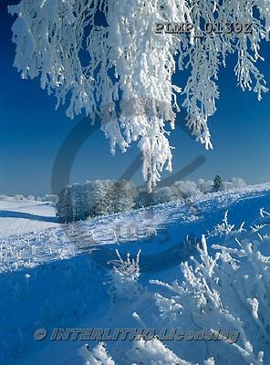 Marek, CHRISTMAS LANDSCAPES, WEIHNACHTEN WINTERLANDSCHAFTEN, NAVIDAD PAISAJES DE INVIERNO, photos+++++,PLMP0139Z,#xl#