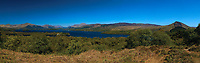 Ben Lomond, Loch Lomond and the Luss Hills from Inchcailloch, Loch Lomond and the Trossachs National Park, Stirlingshire