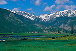 A summer view of snowcapped peaks from Moraine Park in Rocky Mountain National Park, Colorado.