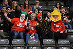 Wales fans prior to kick off <br /> <br /> Swansea University International Netball Test Series: Wales v New Zealand<br /> Ice Arena Wales<br /> 08.02.17<br /> &copy;Ian Cook - Sportingwales