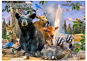 Howard, REALISTIC ANIMALS, REALISTISCHE TIERE, ANIMALES REALISTICOS, paintings+++++Yellowstone critter poster,GBHRPROV144,#A# ,puzzles