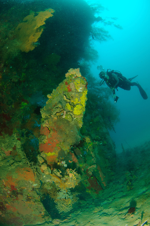 A diver views the propeller on a sunken Japanese warship