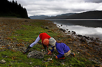 Beach combing on Moser Island at the forest service cabin camp site used on a ground truthing expedition by Bob Christensen,Richard Carstensen, Keynon Fields and Eric Ringler, to see investigating past and proposed timber projects in the Tongass National Forest.  Looking at the past and trying to determine the effect of proposed cuts..The group downloads information that was collected from field notes, pictures and information from wireless GPS units they wear in their hats as they hike through the forest and estuaries.   They are mapping the forest, uncut, proposed cut and old logging sites to see what is there...They were joined plane flew in with Ken Leghorn, daughter Yana, Maya and Ken Rait, and Michael Webster.