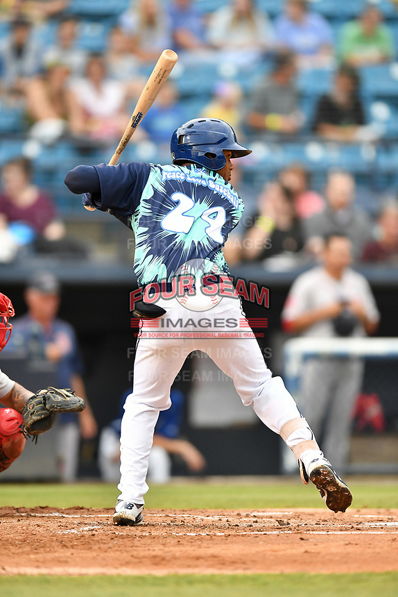 Asheville Tourists Daniel Montano (24) at bat during a game against the Greenville Drive on Hippie Night at McCormick Field on July 11, 2019 in Asheville, North Carolina. The Drive defeated the Tourists 6-2. (Tony Farlow/Four Seam Images)