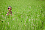 A child runs through a rice field in Kunderpara, a village on an island in the Brahmaputra River in northern Bangladesh.