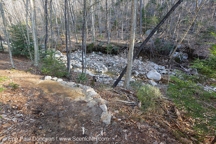 Tropical Storm Irene (2011) washed out part of the Mt Tecumseh Trail in New Hampshire, and it had to be relocated. This photo, from April 2012, shows where the relocation rejoins the trail. Erosion damage from Irene can be seen in Tecumseh Brook in the background. The stonework seen here was built after Irene.