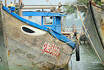 Asia, Vietnam, near Hoi An. Fisher boat on the Thu Bon river near Hoi An.