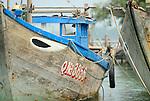 Asia, Vietnam, near Hoi An. Fisher boat on the Thu Bon river near Hoi An.